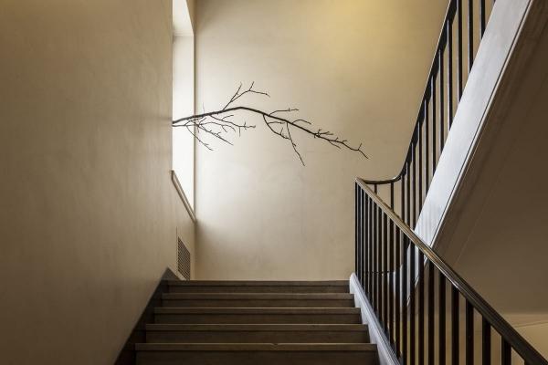 L'architecture des arbres_Paula Anta_La Gran