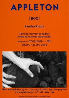 Box: Sandra Rocha