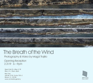 The breathe of the wind