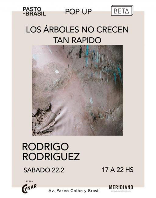 Los árboles no crecen tan rápido / Rodrigo Rodriguez
