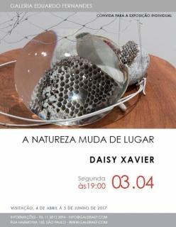 Daisy Xavier