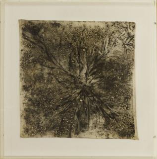 Carlos Vergara - 40 x 40 cm - Monotipia sobre lenço de viagem