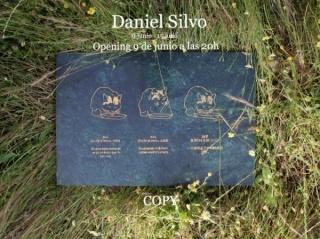 Daniel Silvo