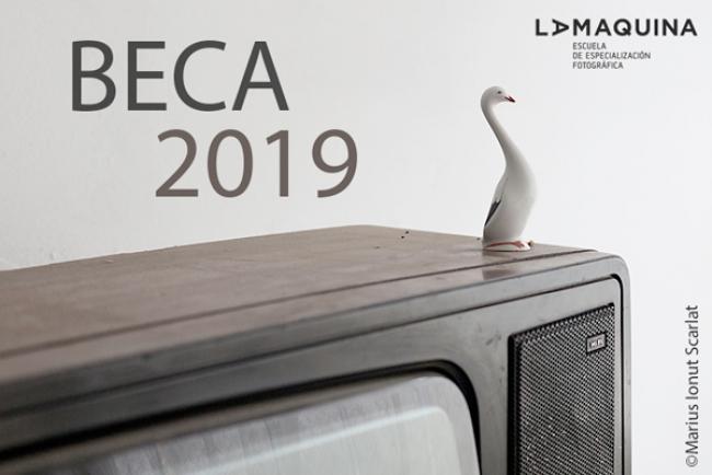 Beca La Máquina 2019