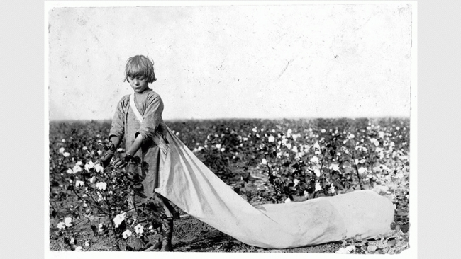 Lewis W. Hine, Norma Lawrence is 10 years old and picks from 100 to 150 pounds of cotton a day..., Comanche County, Oklahoma, 1916 Oct. Library of Congress Prints and Photographs Division, LC-DIG-nclc-00608 [P&P] — Cortesía del Museo Reina Sofía
