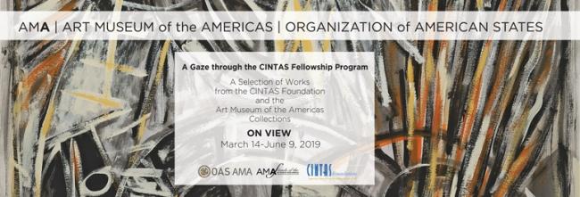 A Gaze through the CINTAS Fellowship Program