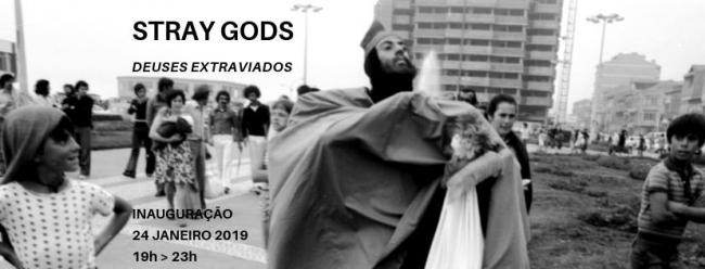 Stray gods
