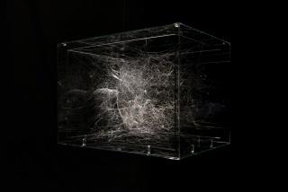 Detalle de la obra de Tomás Saraceno Viviendo en el fondo del océano del aire (araña subacuática), 2018 — Cortesía de Medialab Prado