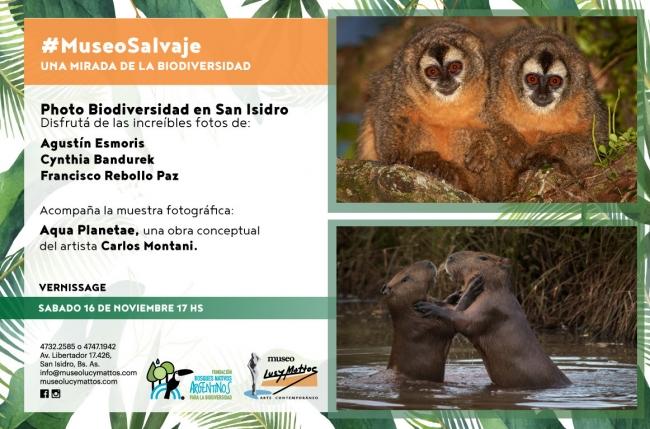 Museo Salvaje: Una Mirada de la biodiversidad