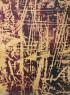 © Juan Luis Goenaga. Arrasto gorri Óleo y pigmentos sobre papel eskulan Olio eta pigmentuak eskuz eginiko paper gainean 84x109 cm. — Cortesía de la Galería Luis Burgos