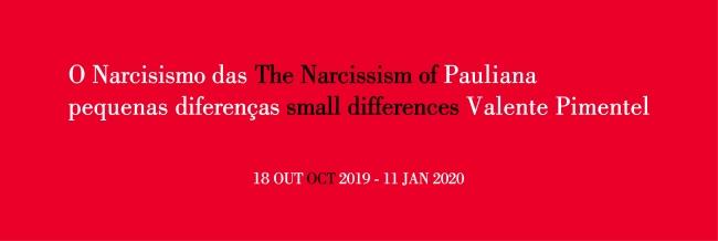 O Narcisismo das pequenas diferenças