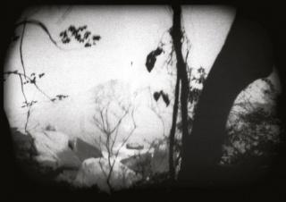 VITRINE: VISLUMBRES. Imagen cortesía Ateliê da Imagem