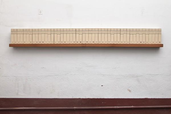 Eugenio Merino, ANOTHER BRICK ON THE WALL, ladrillos impresos con las 50 constituciones americanas 260 cm x 14 cm x 21, 2015, ladrillos, madera, hierro