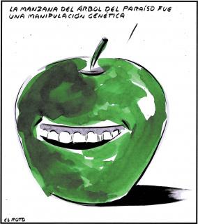 """El Roto, """"La manzana del árbol del paraíso fue una manipulación genética"""", 2020. Dibujo a tinta sobre papel 34 x 30'8 cm. — Cortesía de la Galería Manuel Ojeda"""