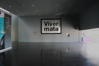 Vasco Vidigal, Viver Mata 2011. Crédito da fotografia ©Vasco Célio