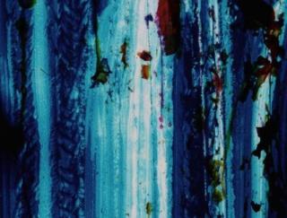 Ana Mendieta, Untitled, c. 1971, still from super-8mm film transferred to high-definition digital media
