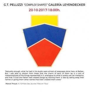 G.T. Pellizzi, Complex Shapes
