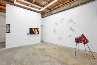Andrés Pereira Paz: BLUE EYES Installation view at The RYDER Projects, London Photo: Tom Carter
