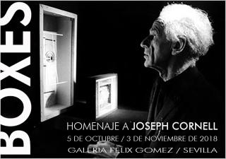 Boxes / Homenaje a Joseph Cornell