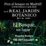 El bosque, un lugar. Begoña Ramos. Real jardín Botánico de Madrid. (Fotografía de la obra Irene del Pino)