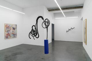 Vista de la exposición «Spit, Drink and Cry - Tactile Hydroponics» — Cortesía de Lehmann + Silva