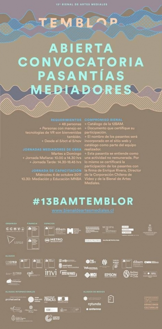13 BVAM - BIENAL DE VIDEO Y ARTES MEDIALES 2017