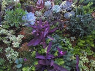 El jardín interior