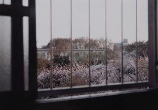 Shinohara Hiroyuki — Cortesía de La Casa Elizalde