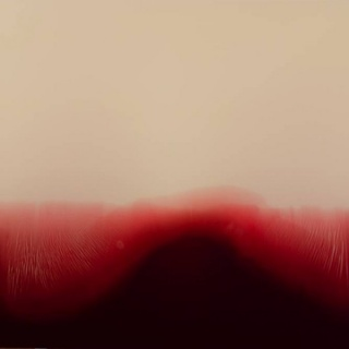 Gerard Fernández RicoTrough the line – T. mixta / fusta  I resina – 100 x 100 cm.