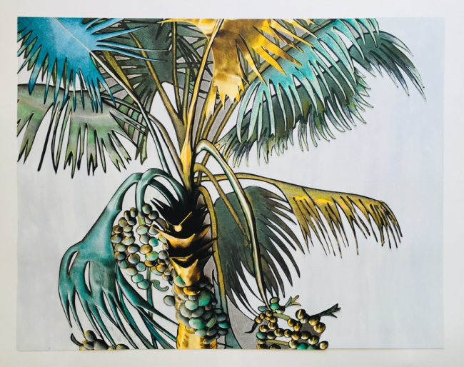 Zinny - Maidagan, Mauritia, 2018. Técnica mixta sobre papel. 108,5 cm x 84 cm — Cortesía de Henrique Faria Buenos Aires