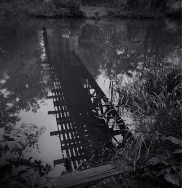 ©Rubén Morales. Serie Der Wald