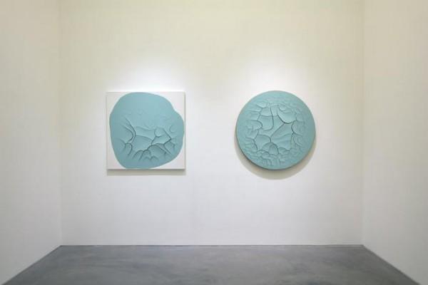 Adriana Varejão Installation View