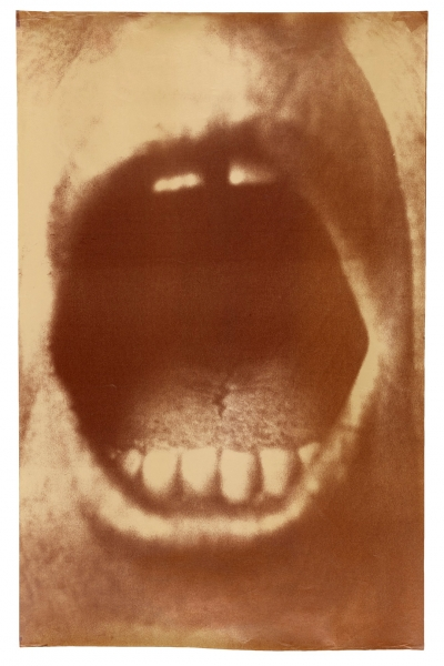 Untitled (#8), 1993. Graciela Sacco (Argentinian, born 1956). Heliograph print, 71.5 × 45.4 cm (28 1/8 × 17 7/8 in.) The J. Paul Getty Museum, Los Angeles, Purchased with funds provided by the Photographs Council. © Graciela Sacco