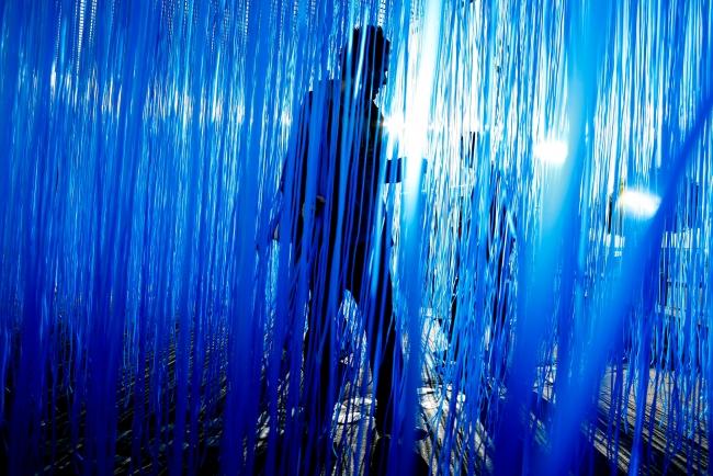 «Pénétrable BBL bleu», 1999, Edición AVILA 2007.