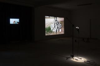 Exhibition view. Photo: Samuel Duarte