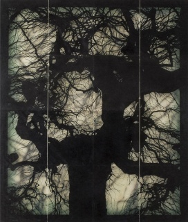 Doug & Mike Starn, Structure of Tought #11, 2001. Fotografia, 101,6 x 86,3 cm — Cortesía de Artur Ramon Art