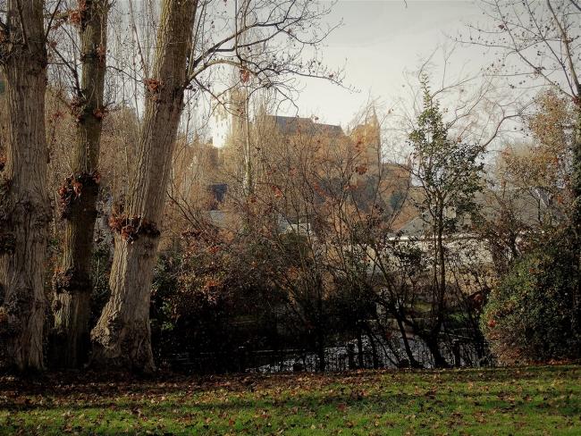 El Alcázar, 2019.
