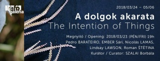 A dolgok akarata / The Intention of Things