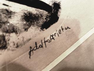 Adolfo Arrieta — Cortesía de espaciovalverde