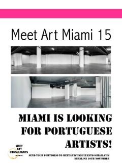 Meet Art Miami 15