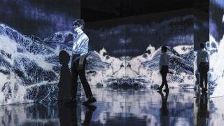 Black Waves Wander, Discover and Re-emerge ©? teamLab, Courtesy teamLab and Pace Gallery — Cortesía de la Fundación Telefónica