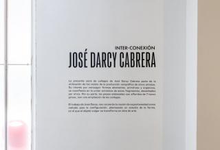 José Darcy Cabrera. Inter-conexión