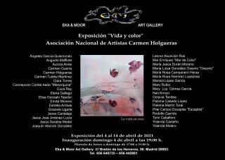 Cartel de artistas exposicion vida y color