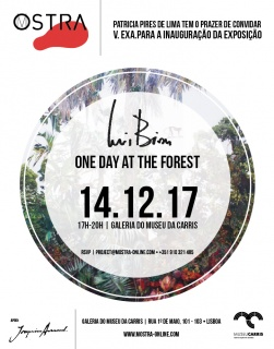 Luis Bivar. One day at the forest