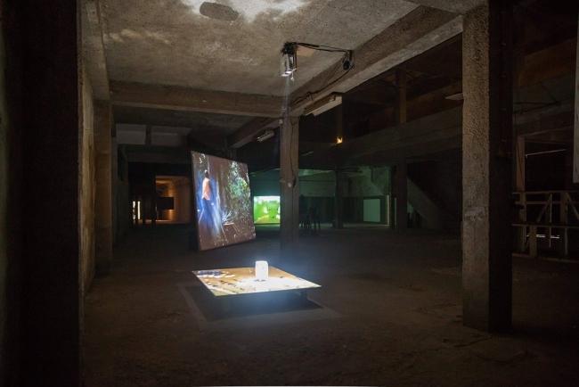 Vista de la instalación Lua Cao (2018) de Alexandre Estrela y Joao Maria Gusmão + Pedro Paiva. (Realizada en Lisboa en 2017 y en Kunstverein München, Munich, en 2018) — Cortesía de La Casa Encendida