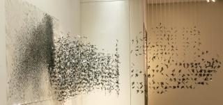 13 Años Premio Arte Joven