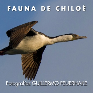 Guillermo Feuerhake. Fauna de Chiloé