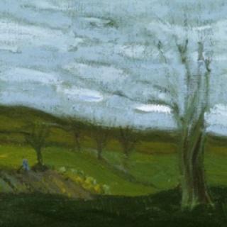Huerta, viento, 2017