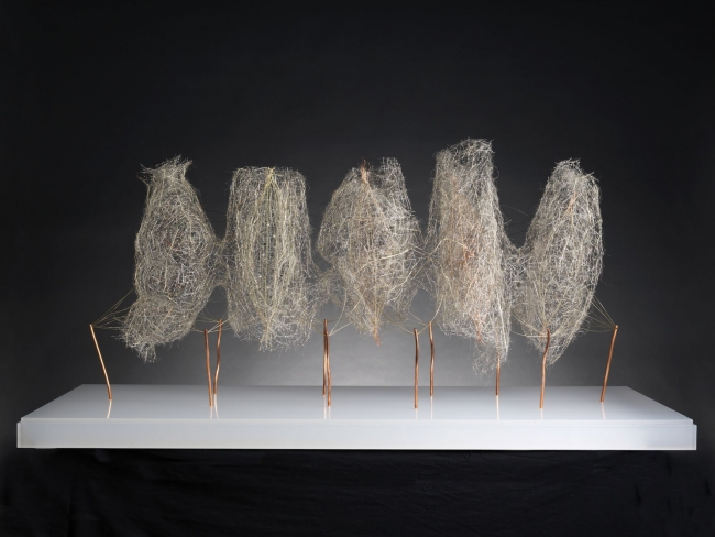 Antonio Crespo Foix, Penta?mero 2018, Alfileres, fibras vegetales y alambre en metacrilato 70 x 138 x 60 cm. — Cortesía de Michel Soskine Inc.