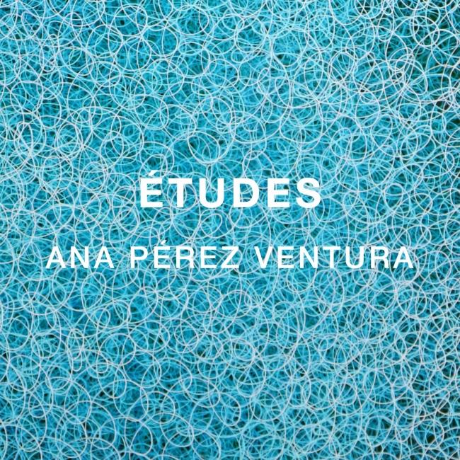 Ana Pérez Ventura. Études